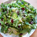 recipe: Arugula & Brussel Sprouts Garden Salad